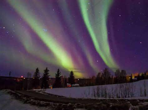 northern lights dome hotel fairbanks tour arctic circle tour see northern