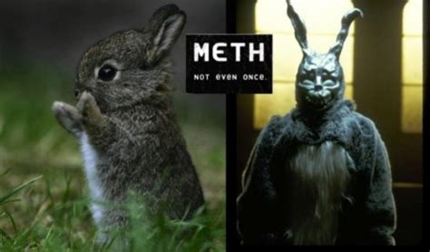 Meth Not Even Once Meme - best of the meth not even once meme thechive