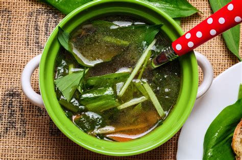 Detox Potassium Broth by Easy Detox Five Simple Steps And A Delicious Detox