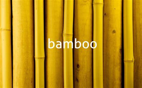 designboom bamboo bamboo handle designboom com