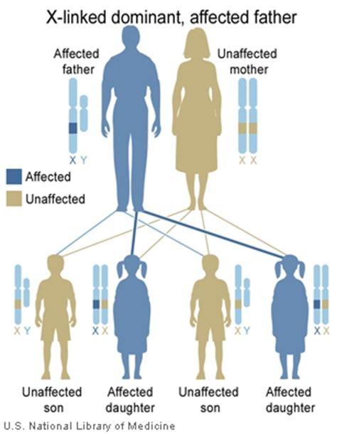 dominant son main inheritance patterns genes in life