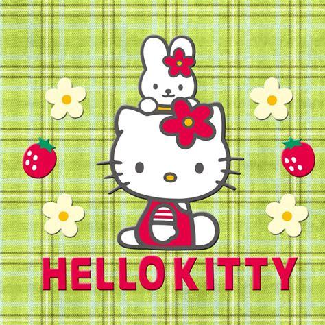 hello kitty ipad wallpaper hd hello kitty ipad wallpaper wallpapersafari