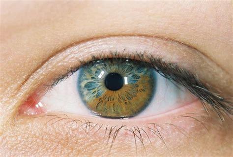 beautiful eye colors eye colors heterochromic macro