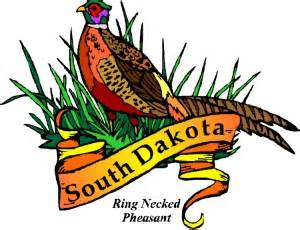 state bird of south dakota birds of south dakota
