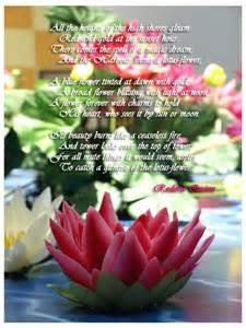 Lotus Poems Lotus Flower Poems Quotes Quotesgram
