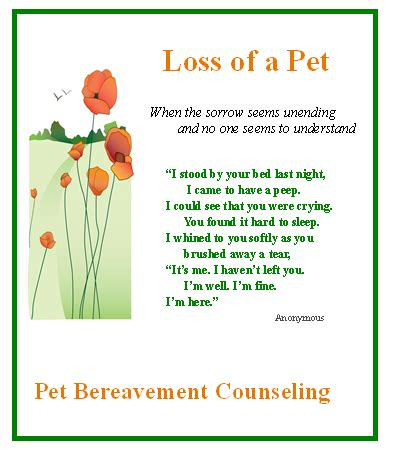 comforting words for loss of a pet pet grieving quotes quotesgram