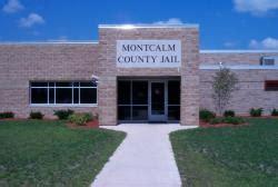 Montcalm County Arrest Records Montcalm County