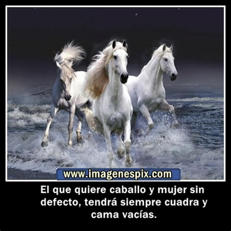 imagenes romanticas con caballos mensajes de amor con caballos imagui