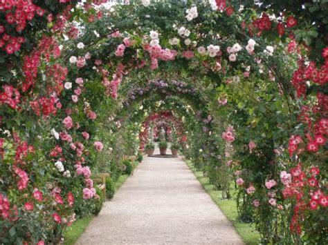Rosengarten Gestalten by Rosengarten Gestalten Und Anlegen Mein Sch 246 Ner Garten
