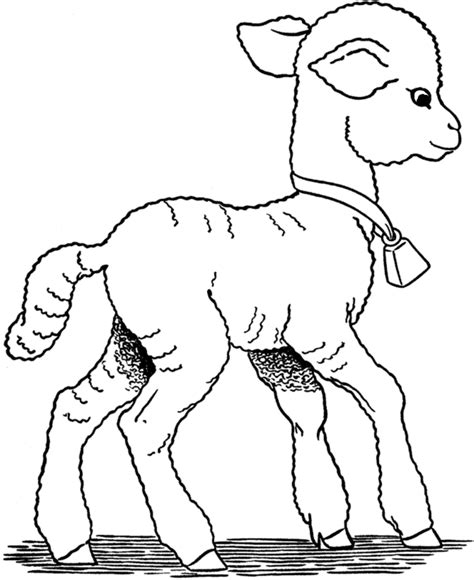 mary had a little lamb coloring sheets coloring pages