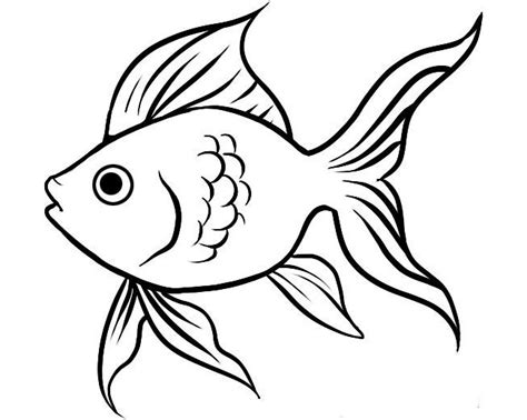 fish drawing outline  getdrawingscom