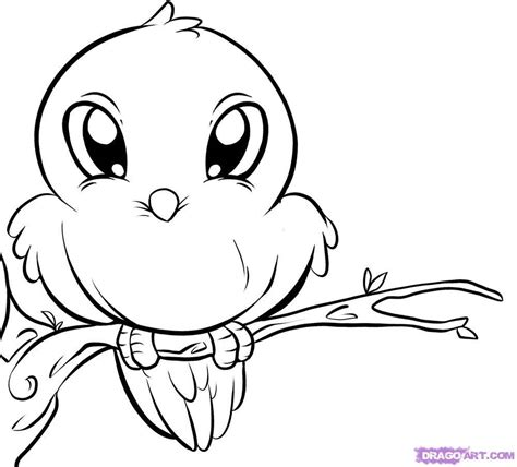 printable animal drawings ini cute bird coloring pages free printable pictures