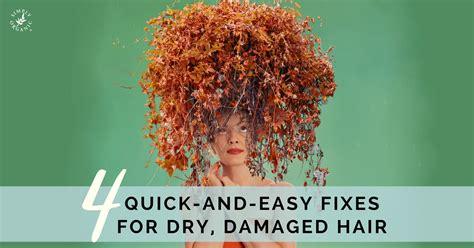 shoo for dry hair over 50 shoo for dry damaged hair shoo for dry damaged hair 4