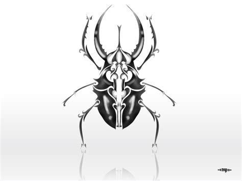 scarab beetle tattoo designs beetle images designs