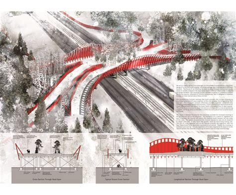 design competition international wildlife crossing design competition drawing on the land