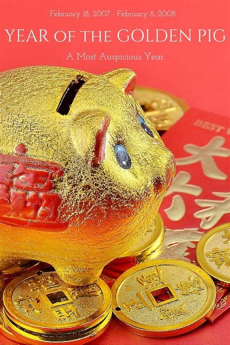 new year of the golden pig why babies born in year of the golden pig are so lucky