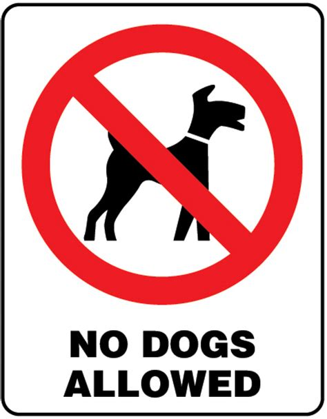 no dogs allowed sign no dogs allowed sign 4 signs uk