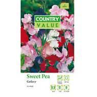 Country Value Marigold Mixed country value marigold bonita flower seeds bunnings warehouse