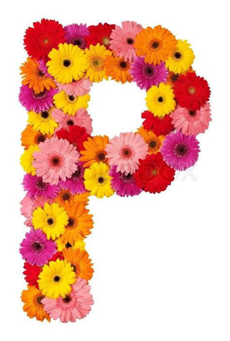 Home Decoration Inspiration by Letter P Flower Alphabet Isolated On White Background