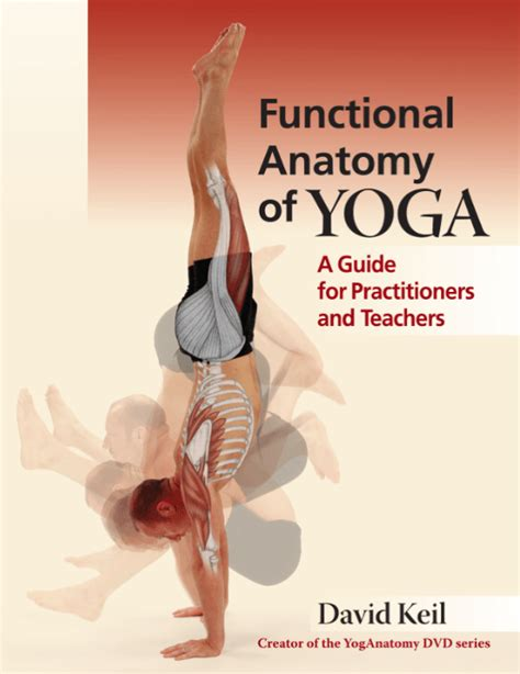 yoganatomy home of david keil creator of yoga anatomy resources