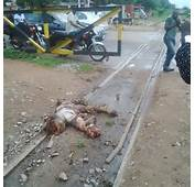 Graphic Photos Man Crushed By Train In Makurdi Yesterday
