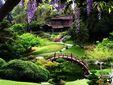 San Francisco Garden by Step Into The Best Botanical Gardens In The United States