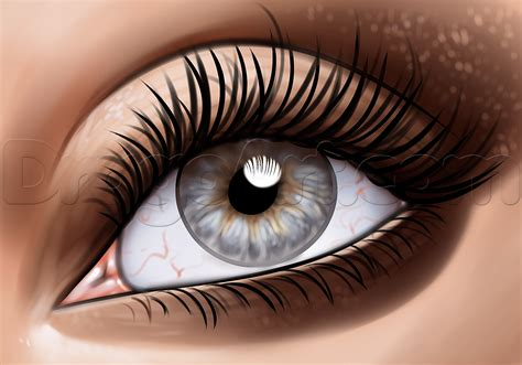 Drawing Eyelashes how to draw eyelashes step by step free