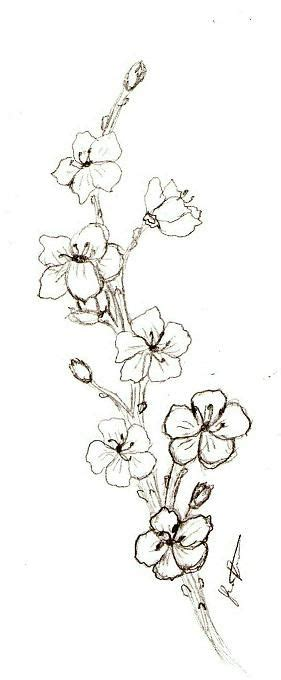 pin by cherrie gray on places pictures old and cherry blossom tattoo black and grey google zoeken ink