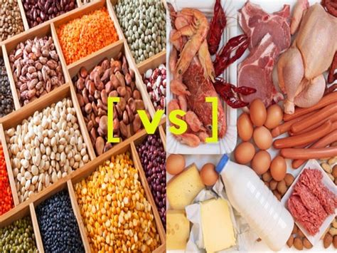 carbohydrates vs proteins weight loss diet carbohydrates versus protein for weight loss