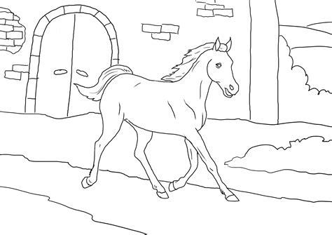 imagenes originales de animales dibujo colorear 75 dibujo de animales para imprimir
