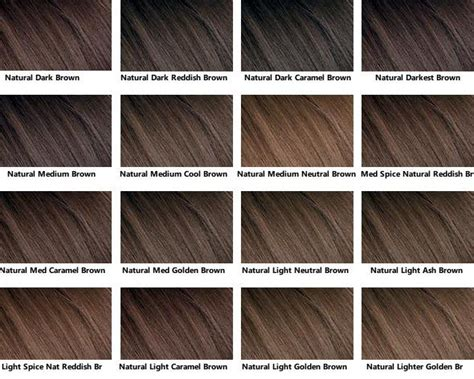 brown color chart brown hair color chart hair clariol hair color