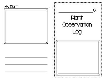 printable plant observation journal 28 seed observation worksheet lesson plans for