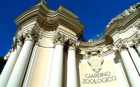 roma giardino zoologico tutto un altro zoo ovvero il bioparco di roma intervista