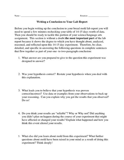 sle 5 paragraph essays conclusion exles for reports exles and forms