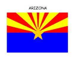 of arizona colors bald eagle clipart and state symbols