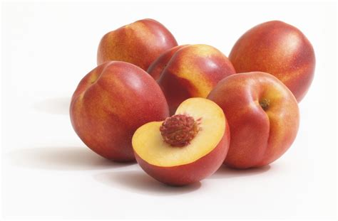fruit similar to related keywords suggestions for nectarine fruit