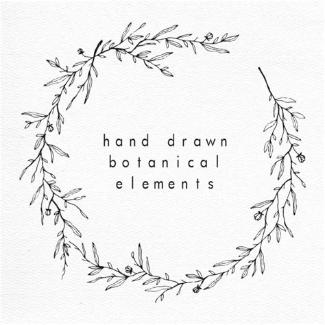 hand draw design elements vector hand drawn botanical elements vector free download