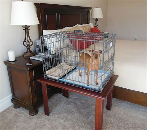 modern puppy apartment pin by modern puppies on puppy apartment nightstand