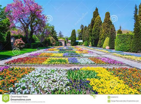 alle verschillende bloemen verschillende soorten bloemen stock foto afbeelding