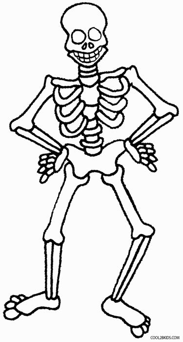 bone shapes coloring pages