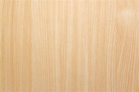 pattern kayu natural beech wood background texture safitri jati furniture