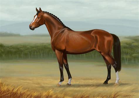 imagenes de paisajes y caballos paisajes bonitos con caballos imagui