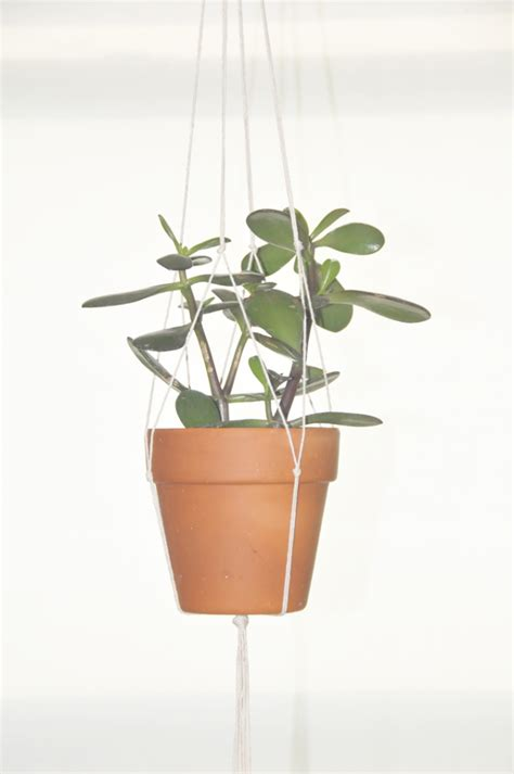 diy hanging plant pot a daily something diy hanging plant holder