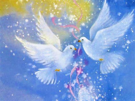 free download images of love birds amazing wallpapers love bird desktop background wallpapers 11800 amazing