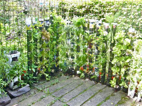 Tower Vegetable Garden My Questions To Wfp Willem Cotthem Gardens