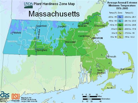 gardening hardiness zones massachusetts zone map for hardiness and planting