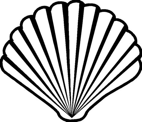 Shell Outline by Shell Line Drawing Search Ornaments Patterns