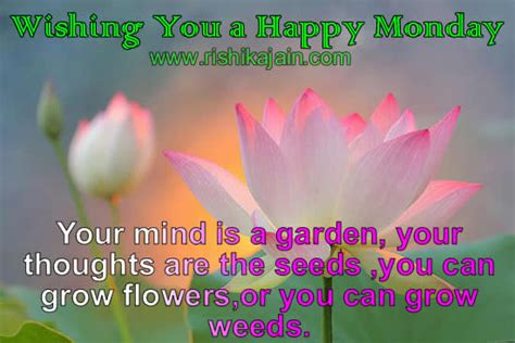 wishing   happy monday daily inspirations  healthy living