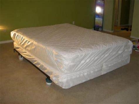 traitement punaise de lit punaise de lit le traitement