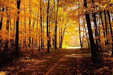 best fall colors in usa best places to view the fall colors best fall foliage in